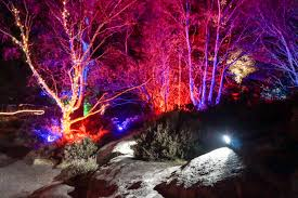 Lights during Santa Safari at Hawkstone Park Follies